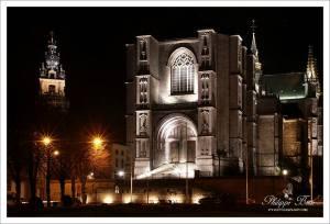Sainte Waudru de nuit