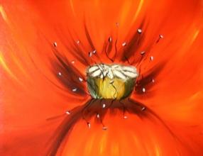 b25-fleur-des-champs