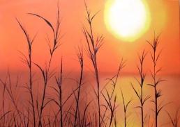 b36-couche-de-soleil
