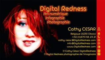 CarteVisite DigitalRedness